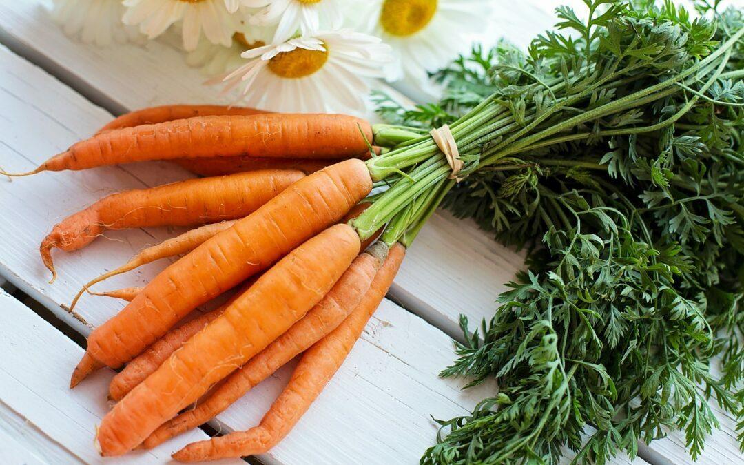 Zanahoria para ver y verte mejor
