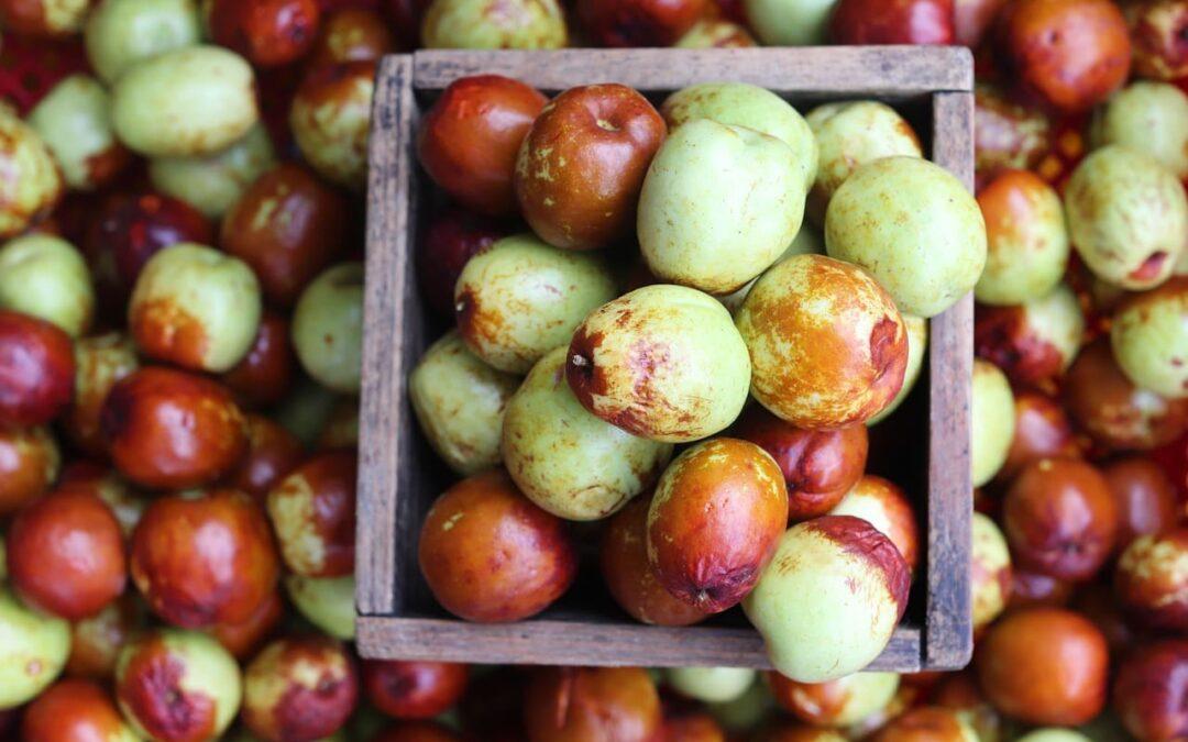 Chinchols, el fruto de los mil nombres